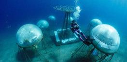 Underwater farming? Biosphere grows strawberries, basil and lettuce deep in the Mediterranean