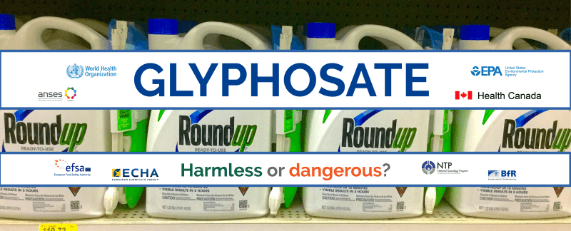 Infographic: Does glyphosate (aka RoundUp) cause cause cancer? 18 of 19 global regulatory and chemical oversight agencies say 'no' while one presents equivocal data