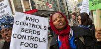 While Africa seeks to harmonize crop biotechnology regulations, activists 'corporate infiltration' narrative