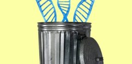 'Junk DNA': The 98% of the human genome that does not encode proteins is often called useless — but the reality is more complicated