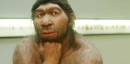 Dimwitted Neanderthals? Pioneering research challenges 'outdated' assumptions about our ancestors