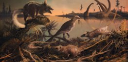 'Our species began as a sort of arboreal rat when dinosaurs ruled the planet': Early hominids spread around the world via a once-green Arabia