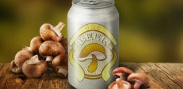 Repurposed mushrooms could make an animal-free, vegan beer — all while using up food waste