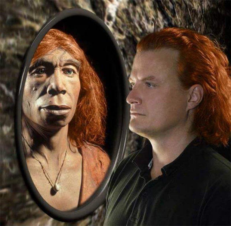 tch neanderthals