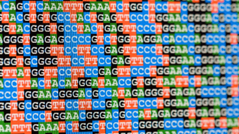 harnessing the human genome