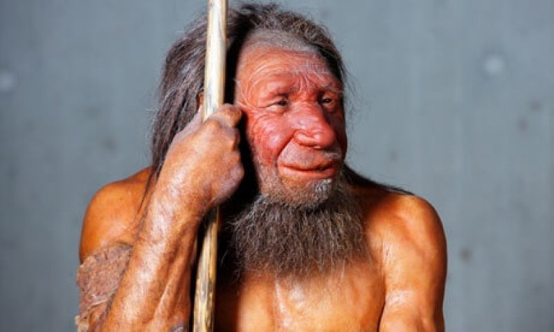 A model of a Neanderthal