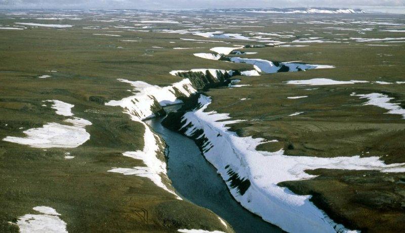 Credit: Arctic Institute
