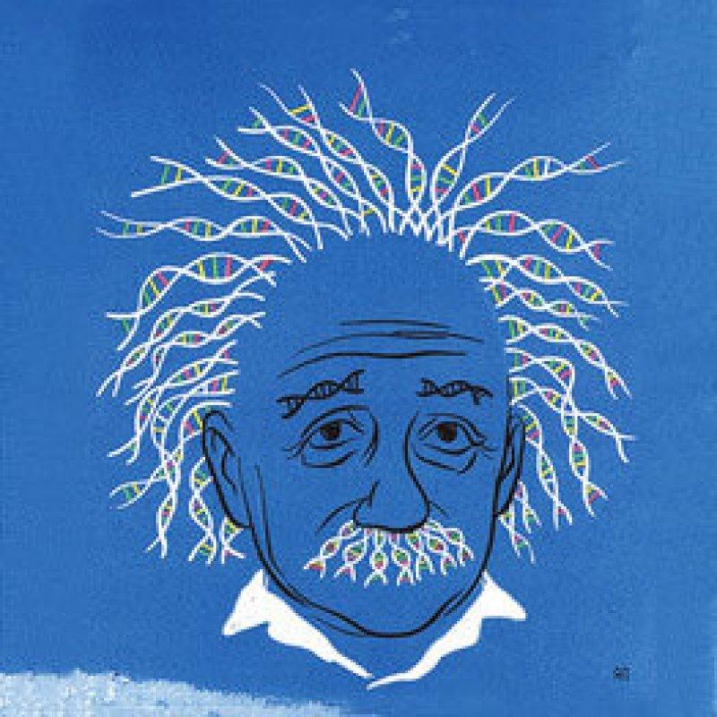 DNA Einstein