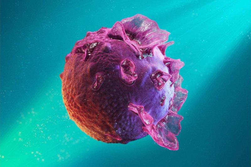 Epstein-Barr virus. Credit: SciTechDaily