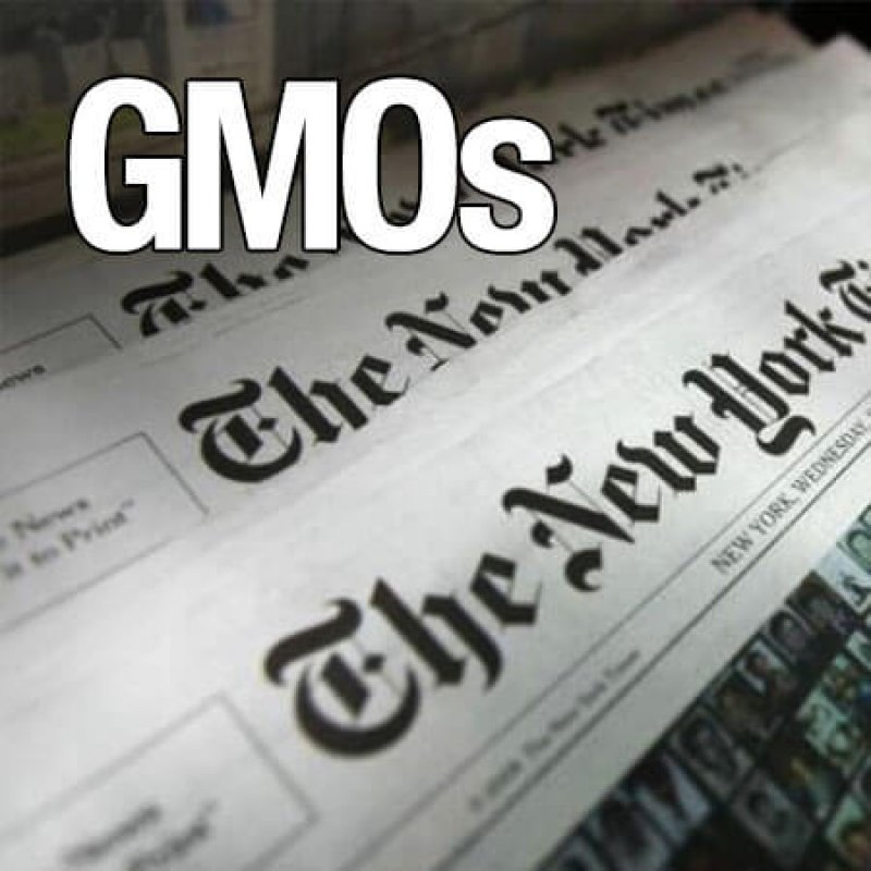 GMO NYT