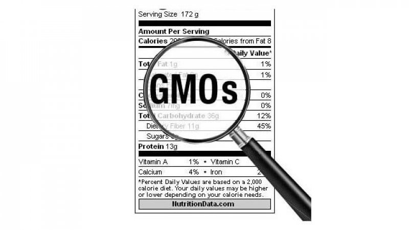 GMO cf f