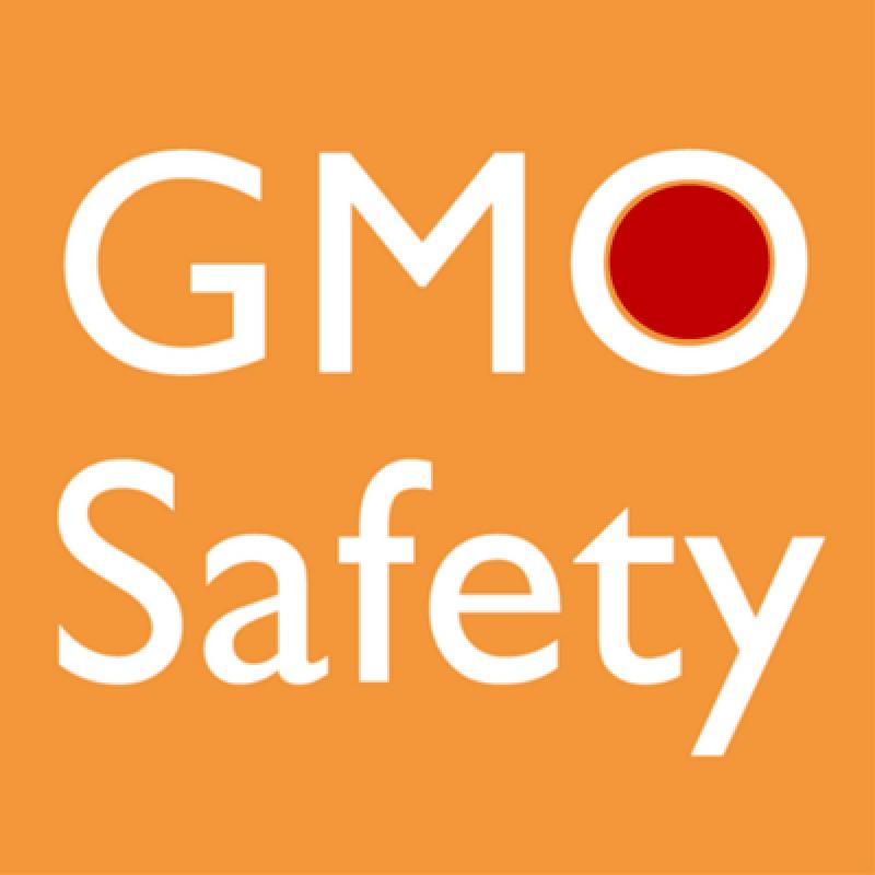 GMOsafety logo dot x