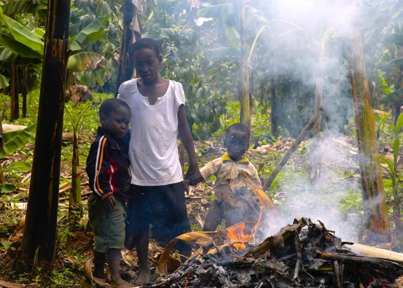 Grandchildren involved in burning the infected plants