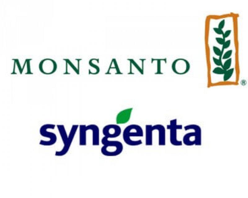 Monsanto Syngenta logo x
