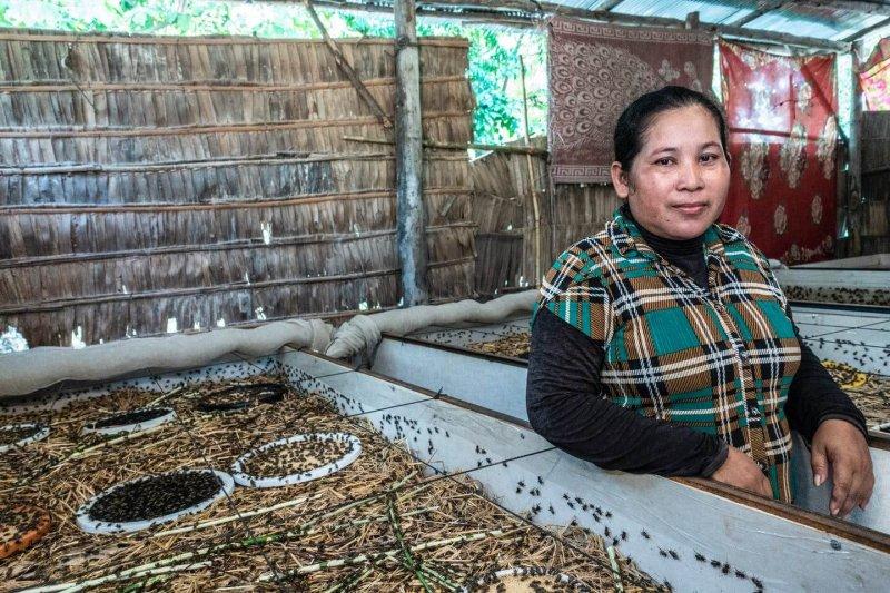 Ngo Sinoun, a 37-year-old Cambodian insect farmer. Credit: Roberto Traina