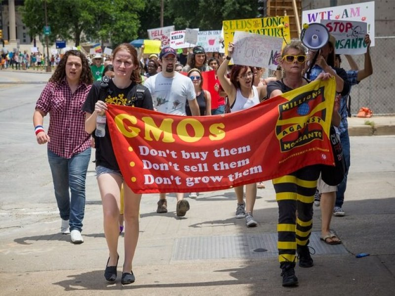 Photo of marchers protesting GMOs