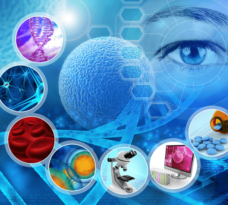 STEM CELL RESEARCH GUIDELINES