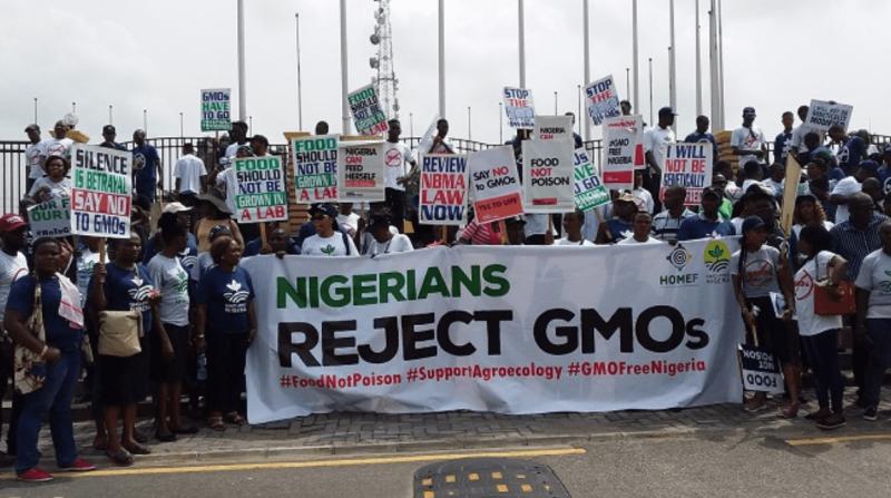 Credit: EnviroNews Nigeria