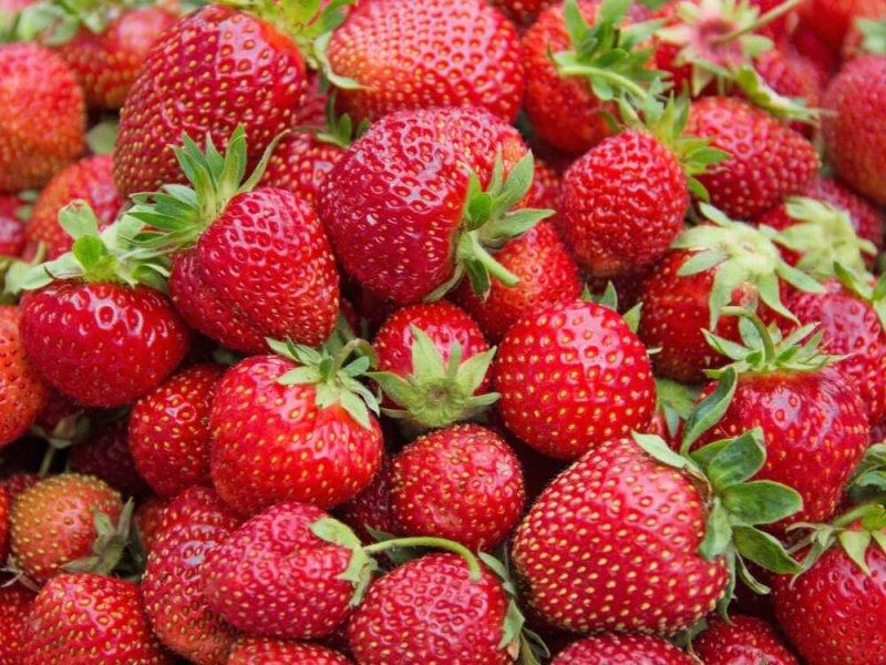 Strawberry Inflammation