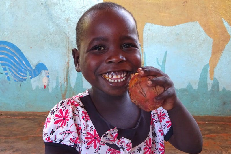 Child in Malawi eats a sweet potato with boosted vitamin A levels. Credit: Ripple Africa