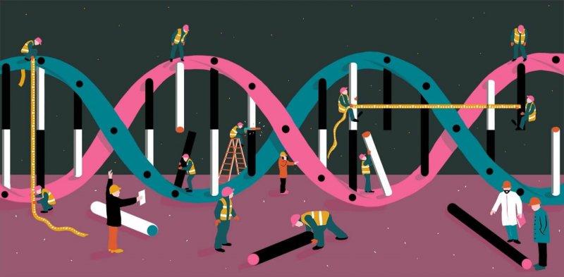TASCABILE DNA x