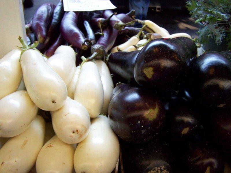 Three Types of Eggplant