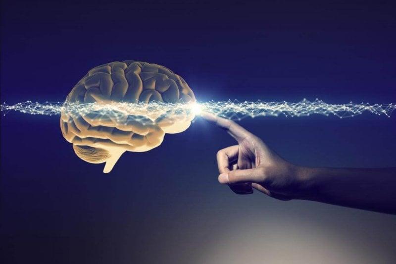 a hand touching the human brain