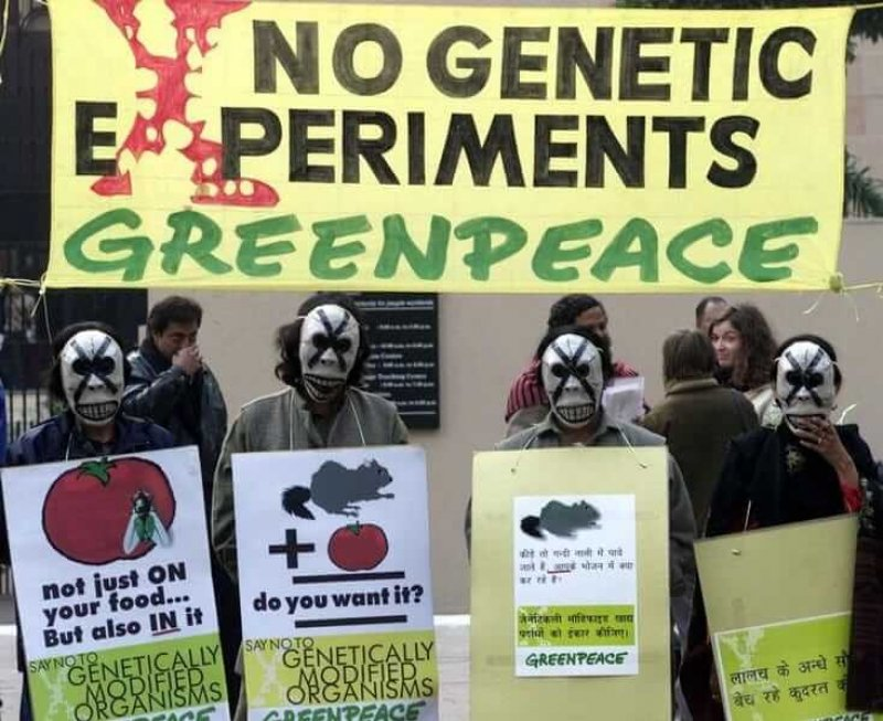 Masked Greenpeace activists hold signs during a demonstration in New Delhi. Credit: Reuters