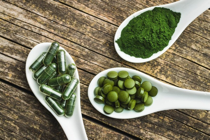 Italy and Israel bet on GM microalgae to develop edible COVID vaccine