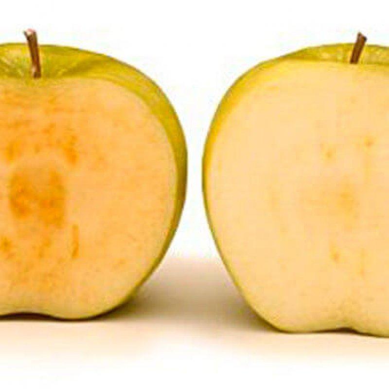 apple comp e