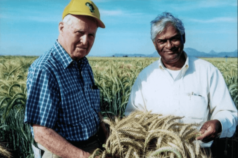 Nobel Peace Prize laureate Norman Borlaug (L) with 2014 World Food Prize laureate Sanjaya Rajaram. Credit: CIMMYT