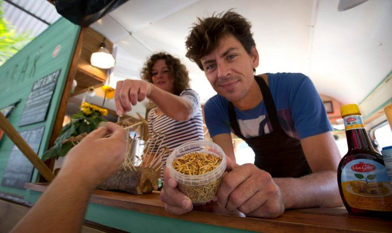 Microbar food truck owner Bart Smit holds a container of yellow mealworms during a food truck festival. Credit: Virginia Mayo