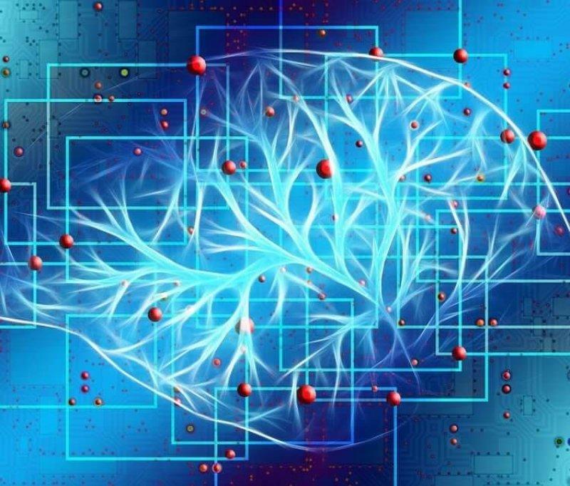 Credit: Neuroscience News
