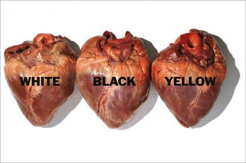 coraçõesa df be fbaf ff c e e ORIGINAL