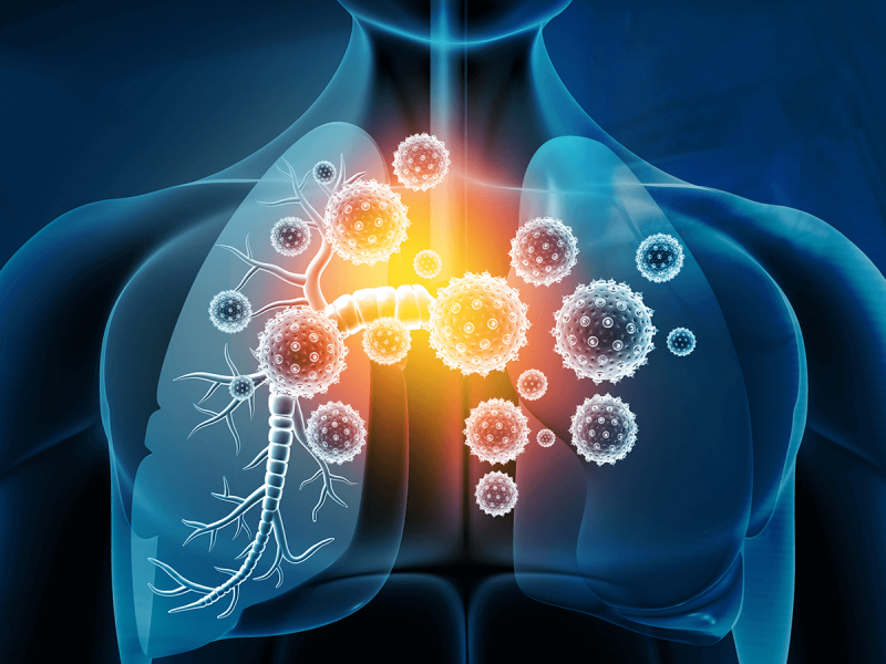 covid coronavirus lungs