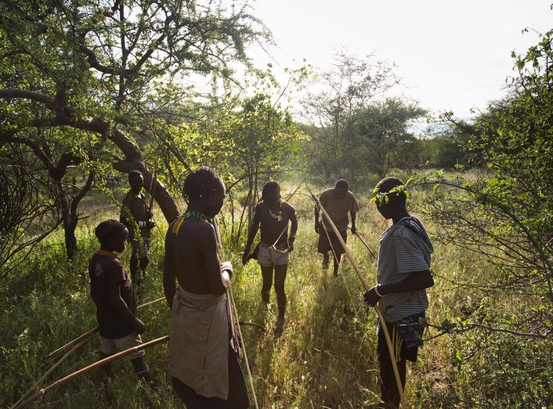 The Hadza people of Tanzania rely on hunting wild game for meat, a task that requires great skill in tracking, teamwork, and accuracy. Credit: Matthieu Paley