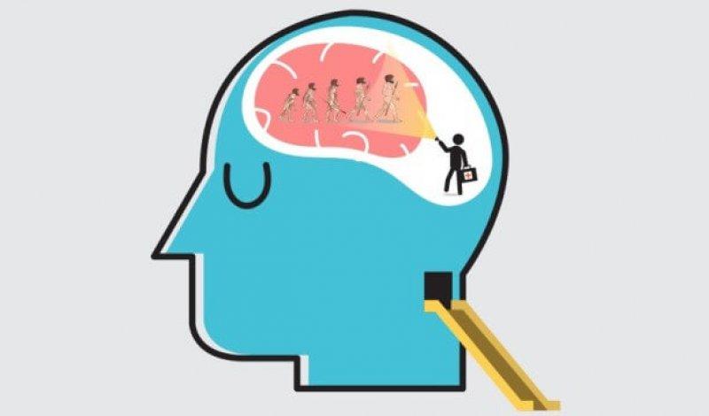 evolutionary psychology wide