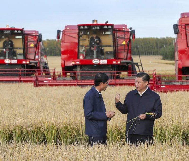 Chinese President Xi Jinping, right, visits a farm in Jiansanjiang. Credit: Xinhua