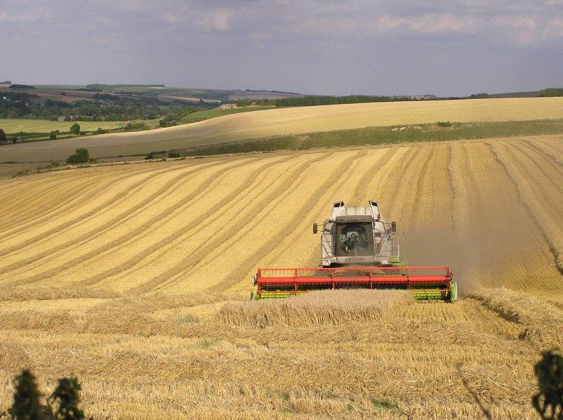 farming harvest uk creditjohn herrett flickr
