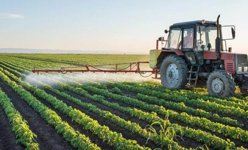 Court That Revoked Epa Dicamba Weedkiller Approval Could Also Ban