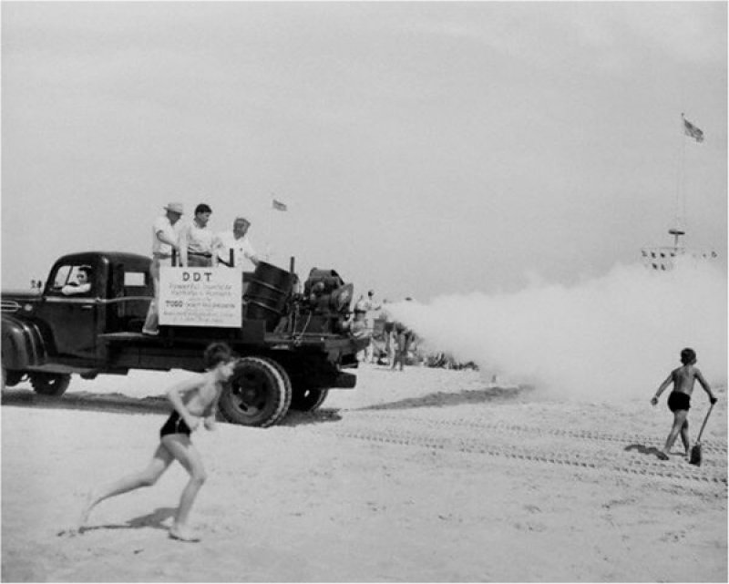 Fogger truck sprays Jones Beach in New York with DDT, 1945. Credit: Bettmann/CORBIS