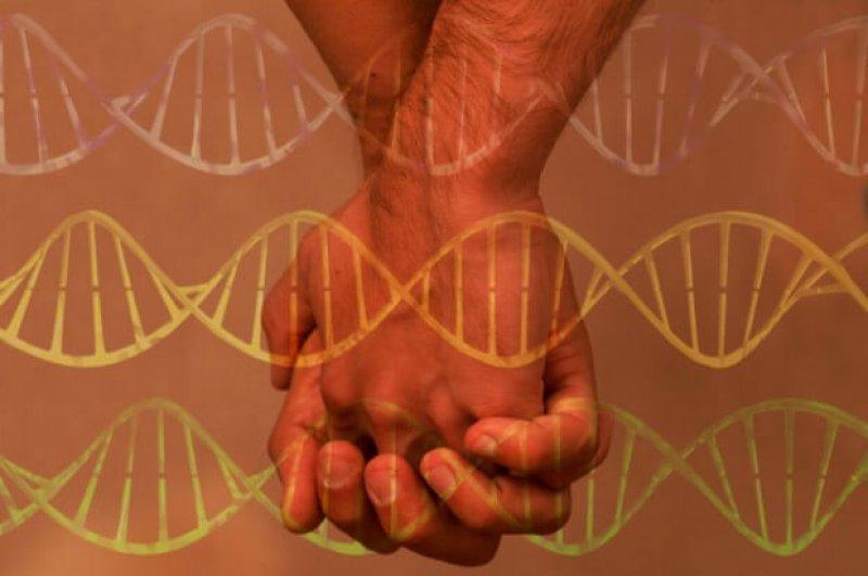 gay genes rect x