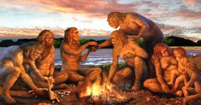 homo sapiens fire