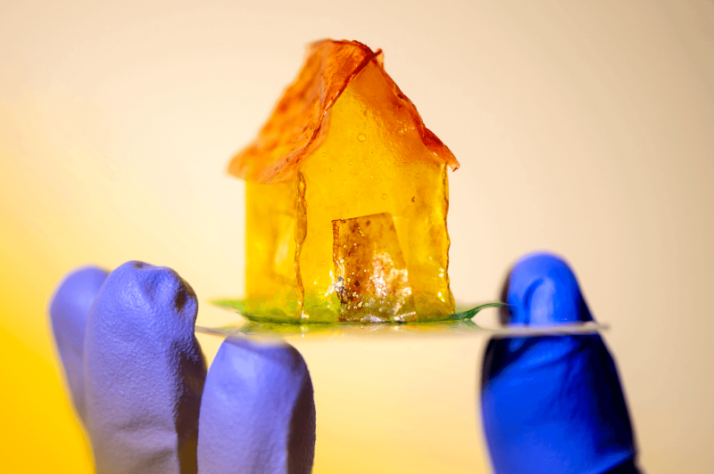 House made of aquaplastic. Credit: Ruby Wallau/Northeastern University