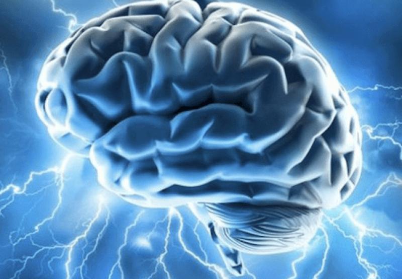 large brain electrical