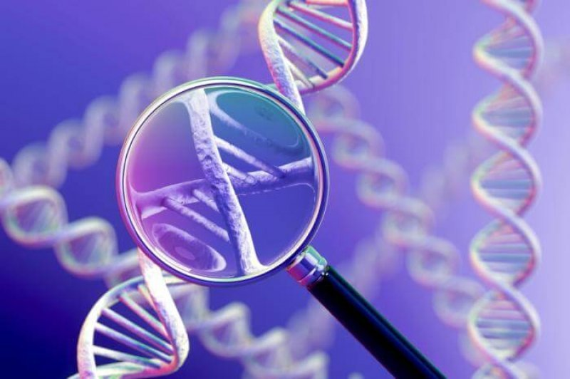 magnifying glass and dna strands