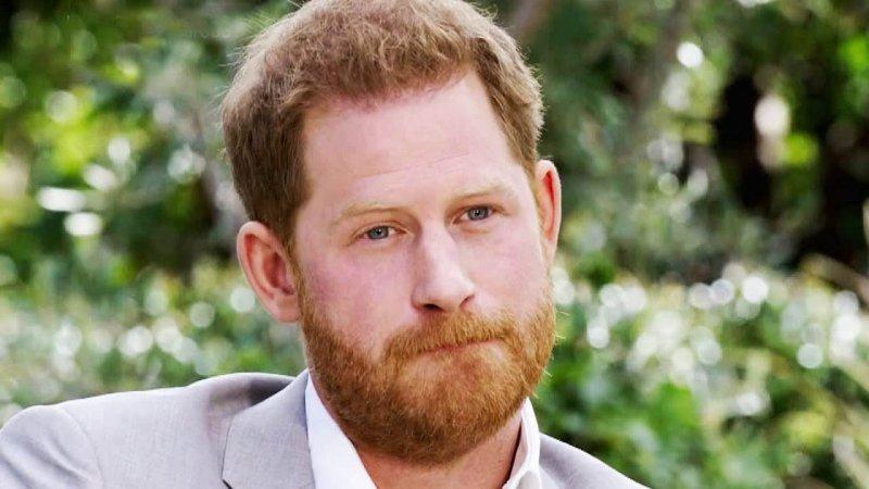 Harry, Duke of Sussex. Credit: Oprah