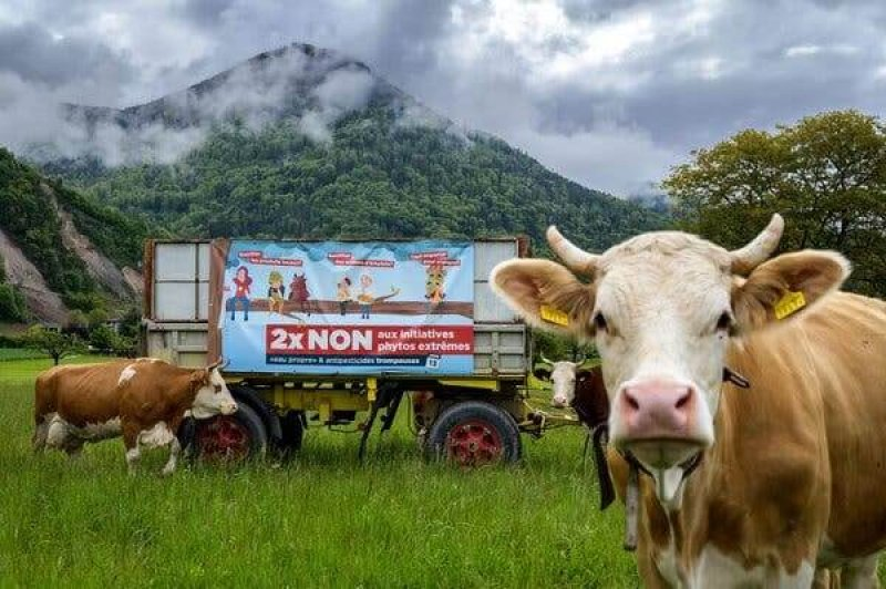 A referendum campaign banner in Ollon, Switzerland, against the use phytosanitary products ahead of a vote on banning the use of pesticides in Swiss agriculture. Credit: Fabrice Coffrini/AFP/Getty Images