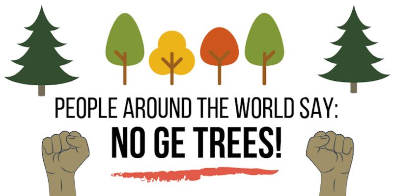 no ge trees en