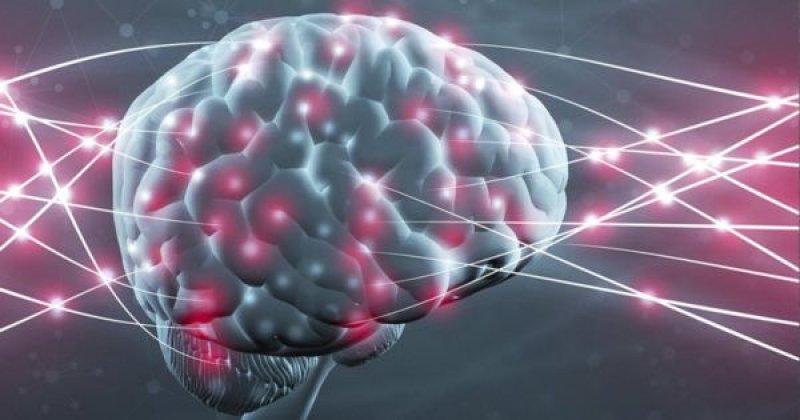 nootropics brain image x